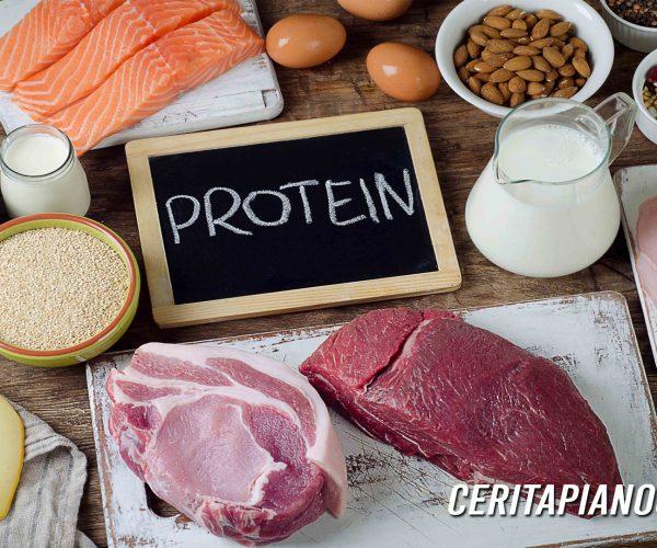 5 Sumber Protein yang Bisa Disimpan di Kulkas dalam Waktu Cukup Lama